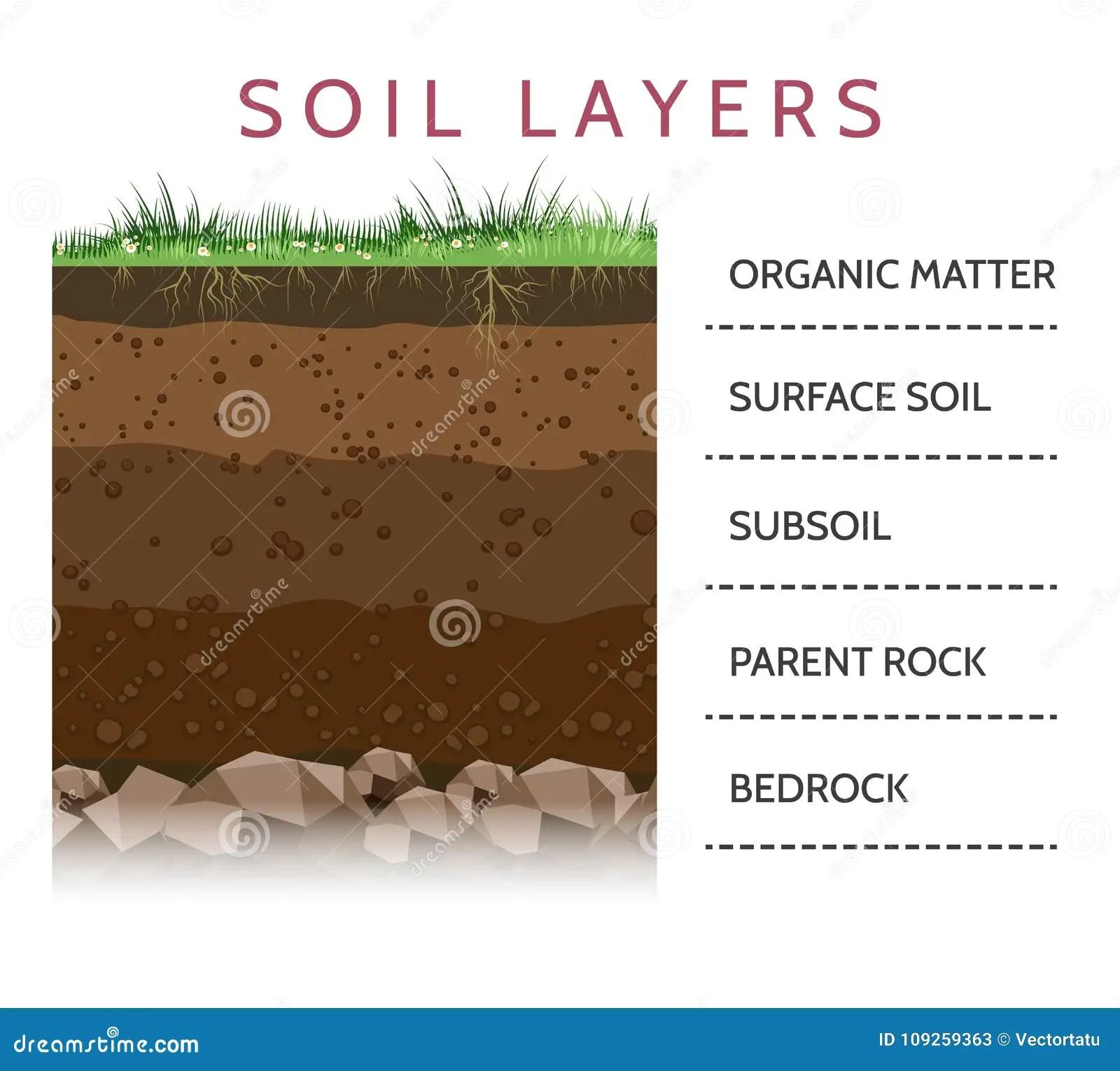 Soil Layer Scheme With Grass Stock Vector