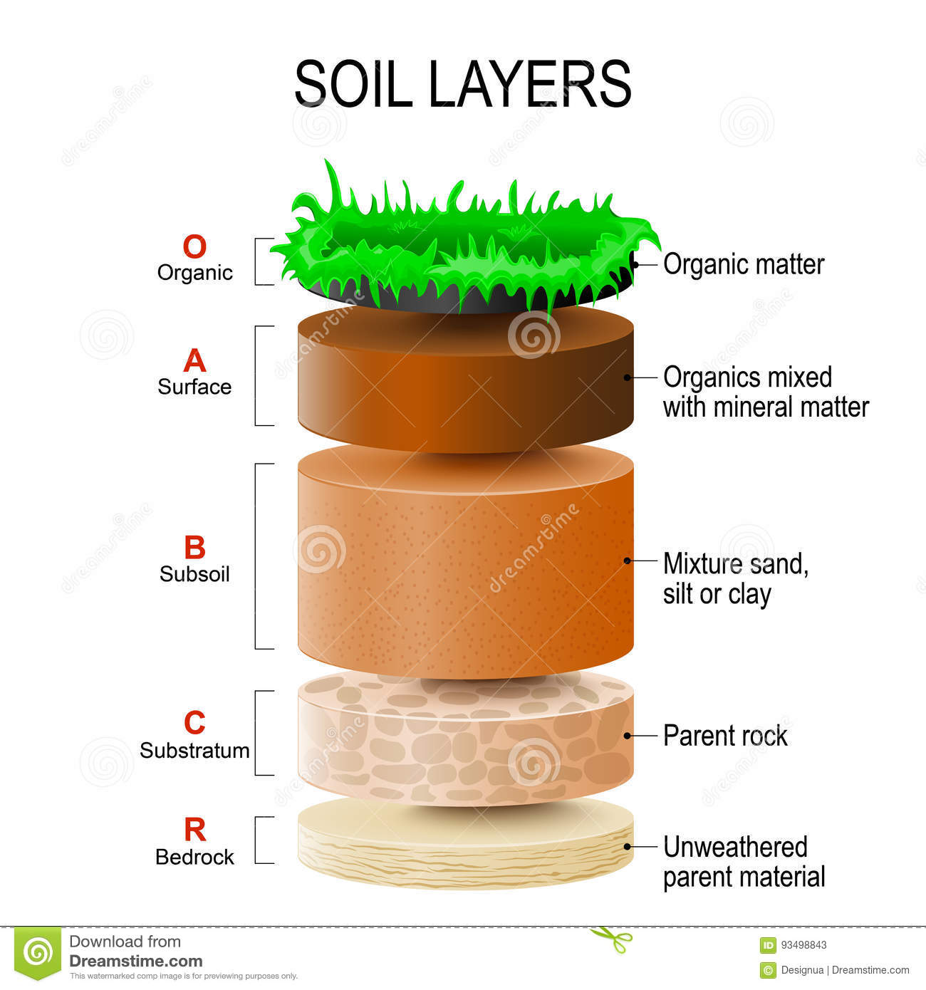 Soil Layers Stock Vector Illustration Of Particles Mixed