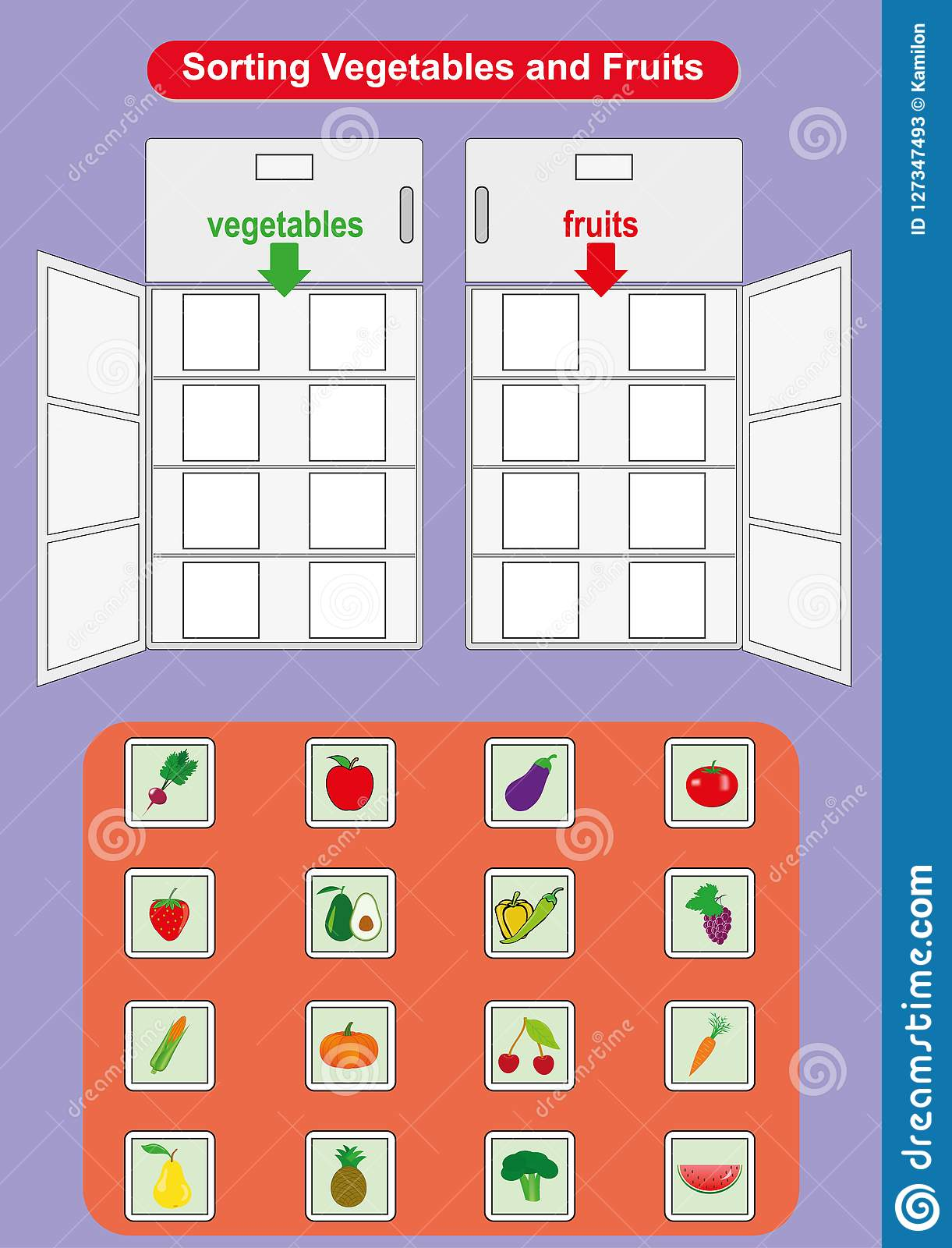 Sorting Fruits And Vegetables In Refrigerator Worksheet