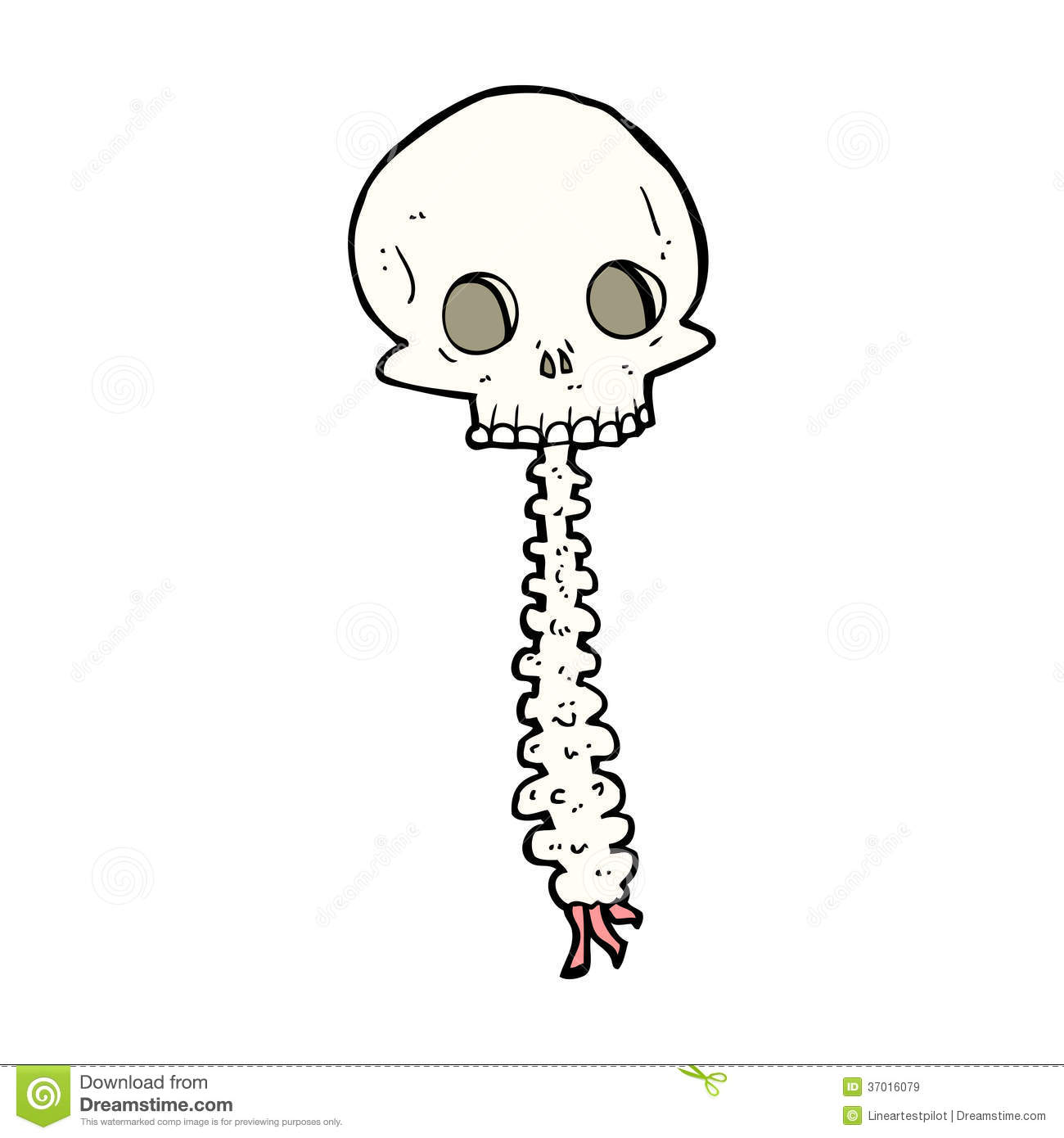 Spooky Cartoon Sull And Spine Stock Vector
