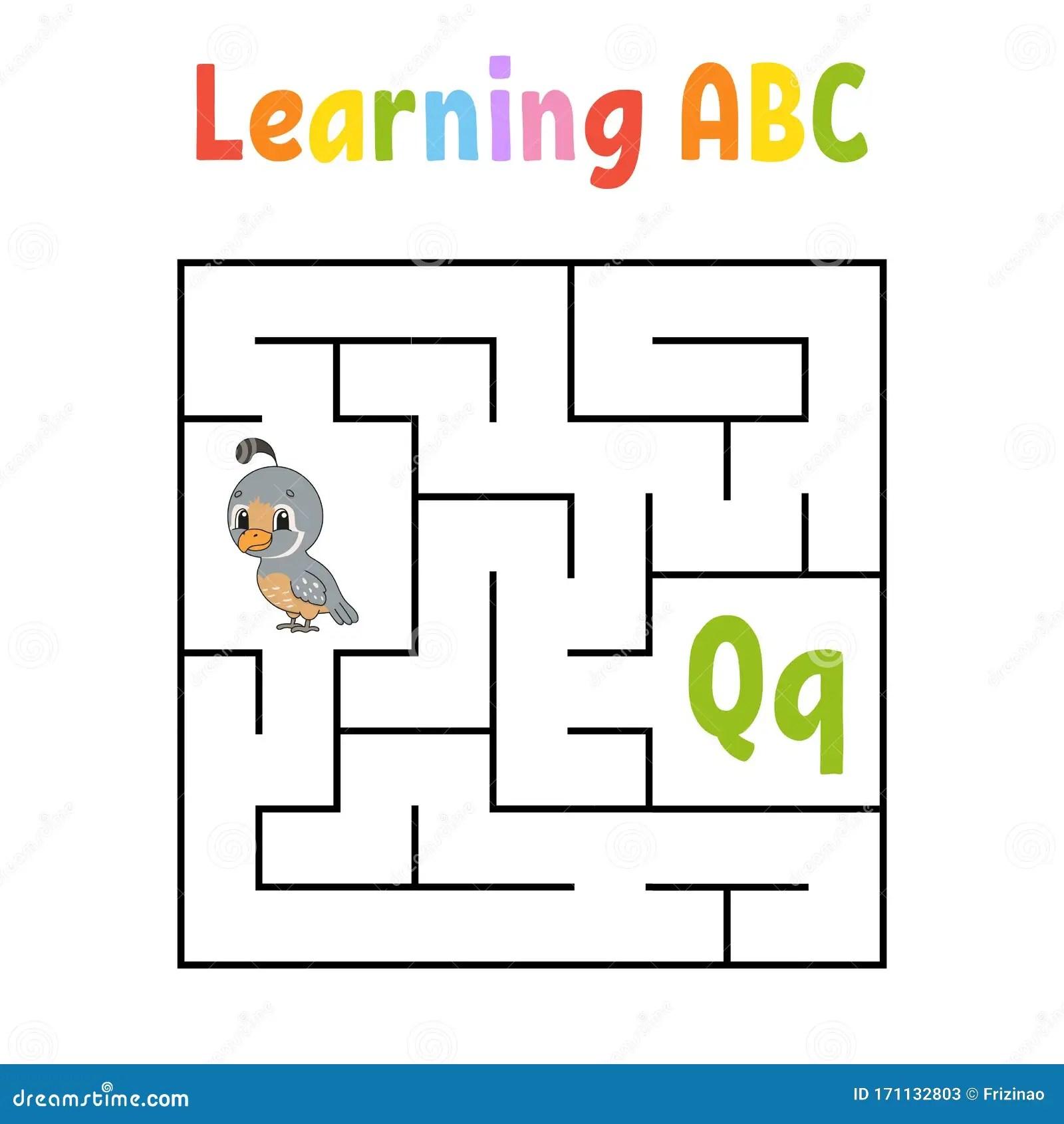 Square Maze Game For Kids Quail Bird Quadrate Labyrinth