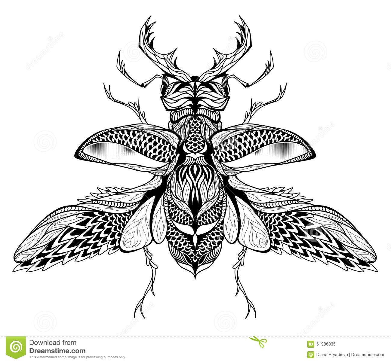 Stag Beetle Vector Vector Illustration