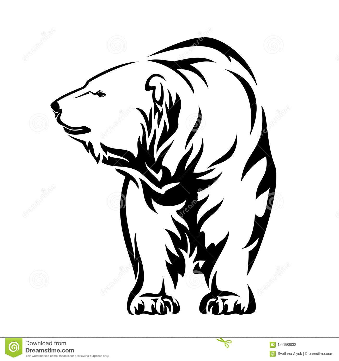 Standing Polar Bear Stock Illustrations 514 Standing