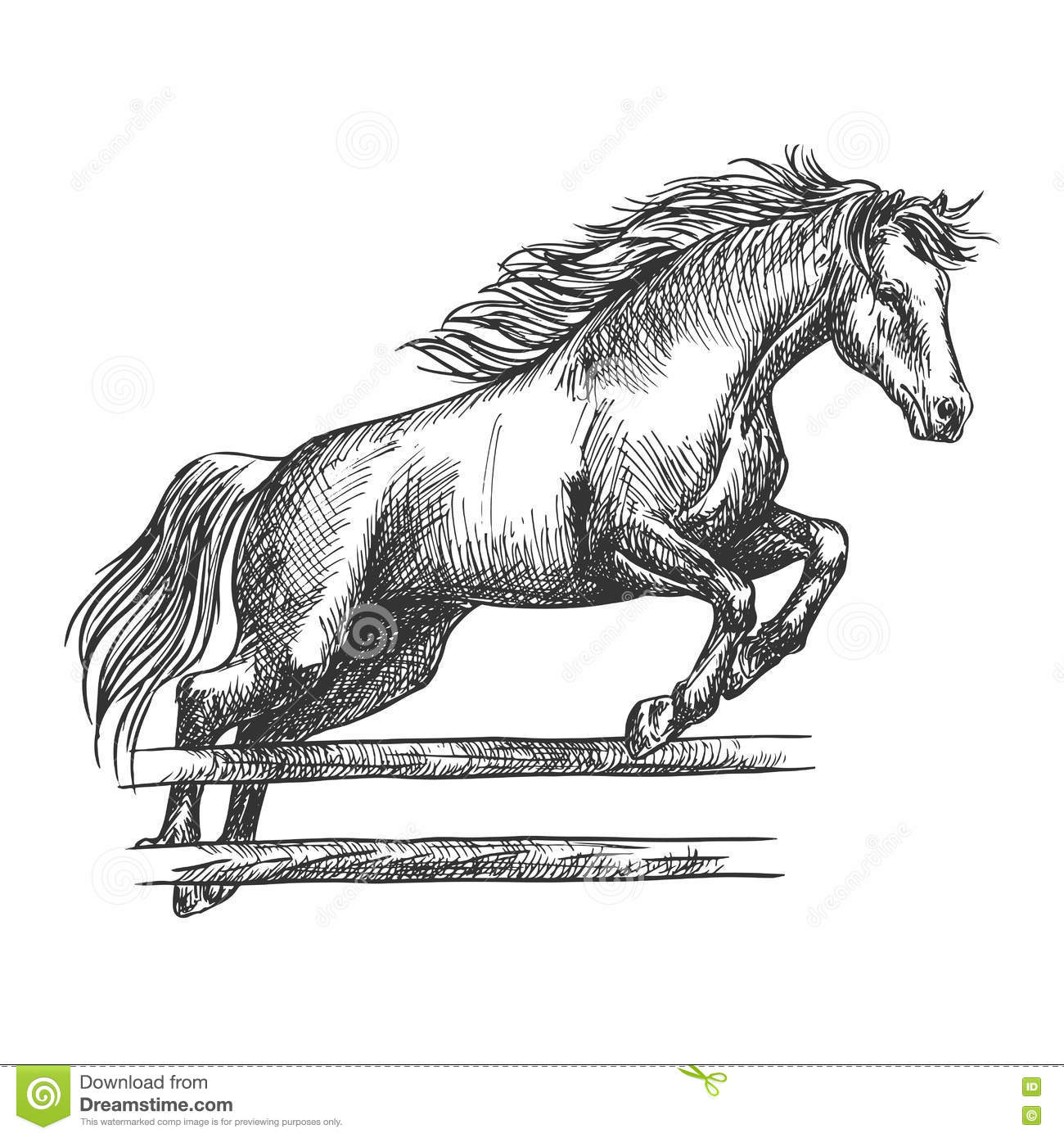 Strong Horse Jumping Over Barrier Stock Vector
