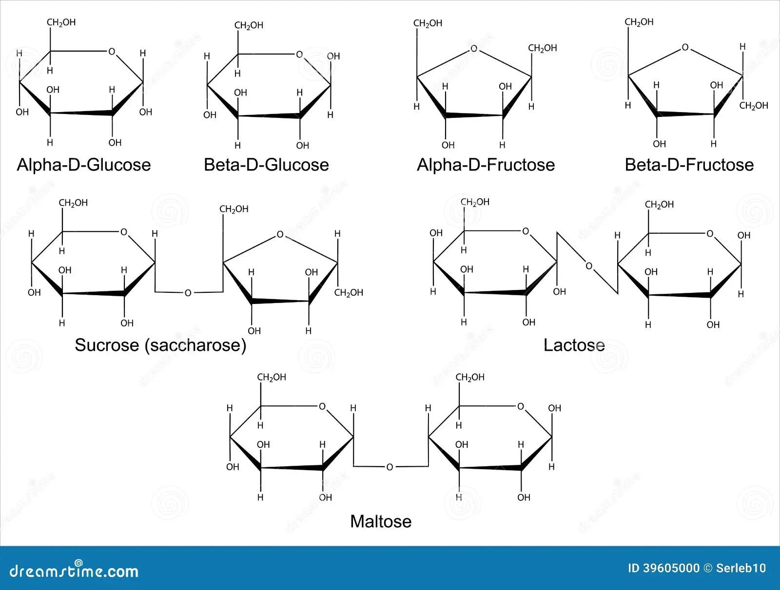 Structurele Formules Van De Belangrijkste Sachariden