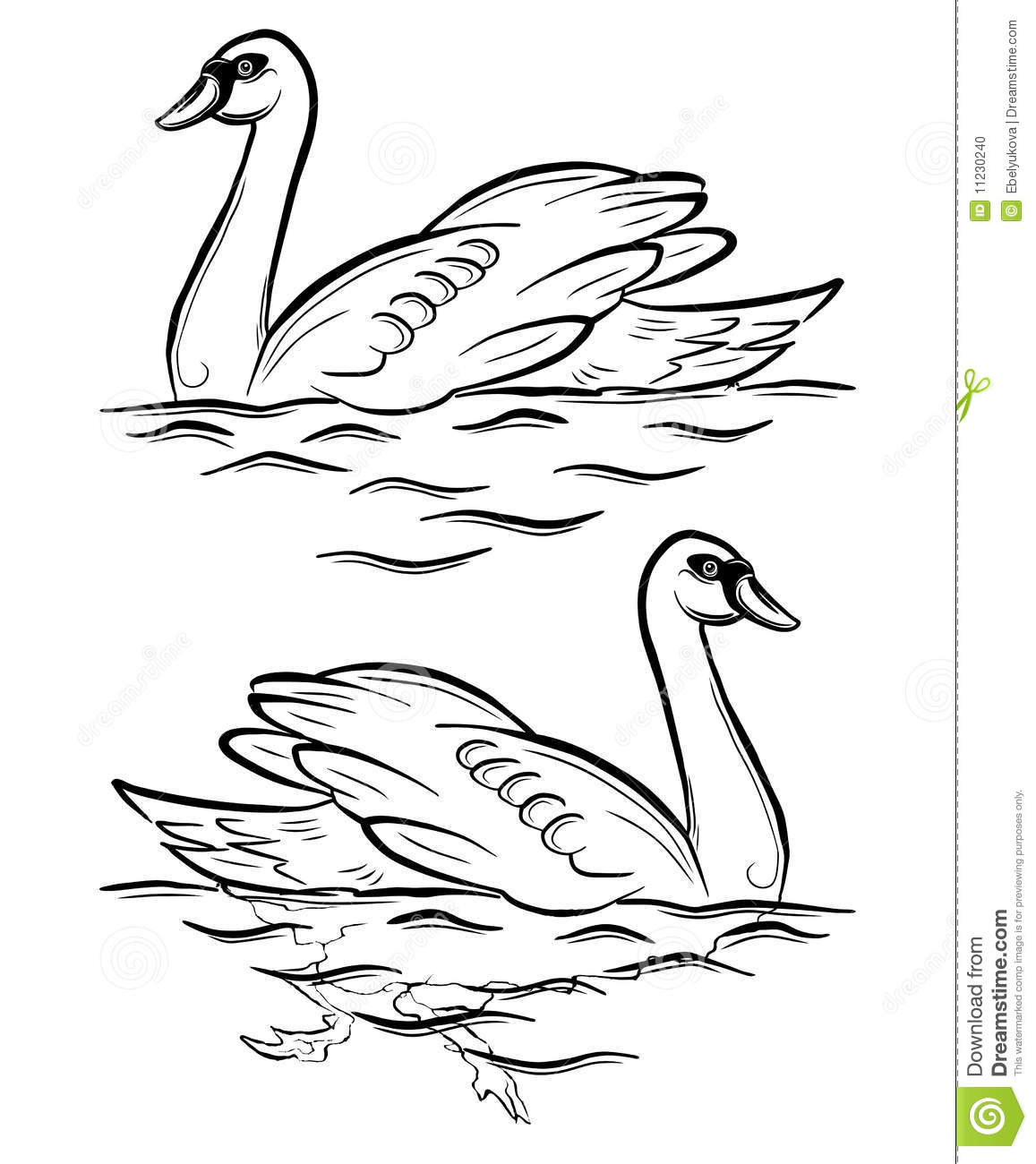 Swan Stock Vector Illustration Of Outline Drawing