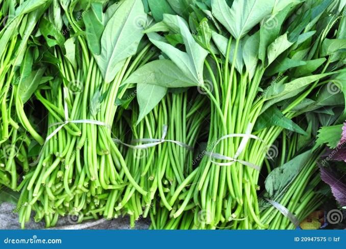 Sweet Potato Leaves Royalty Free Stock Photo - Image: 20947575