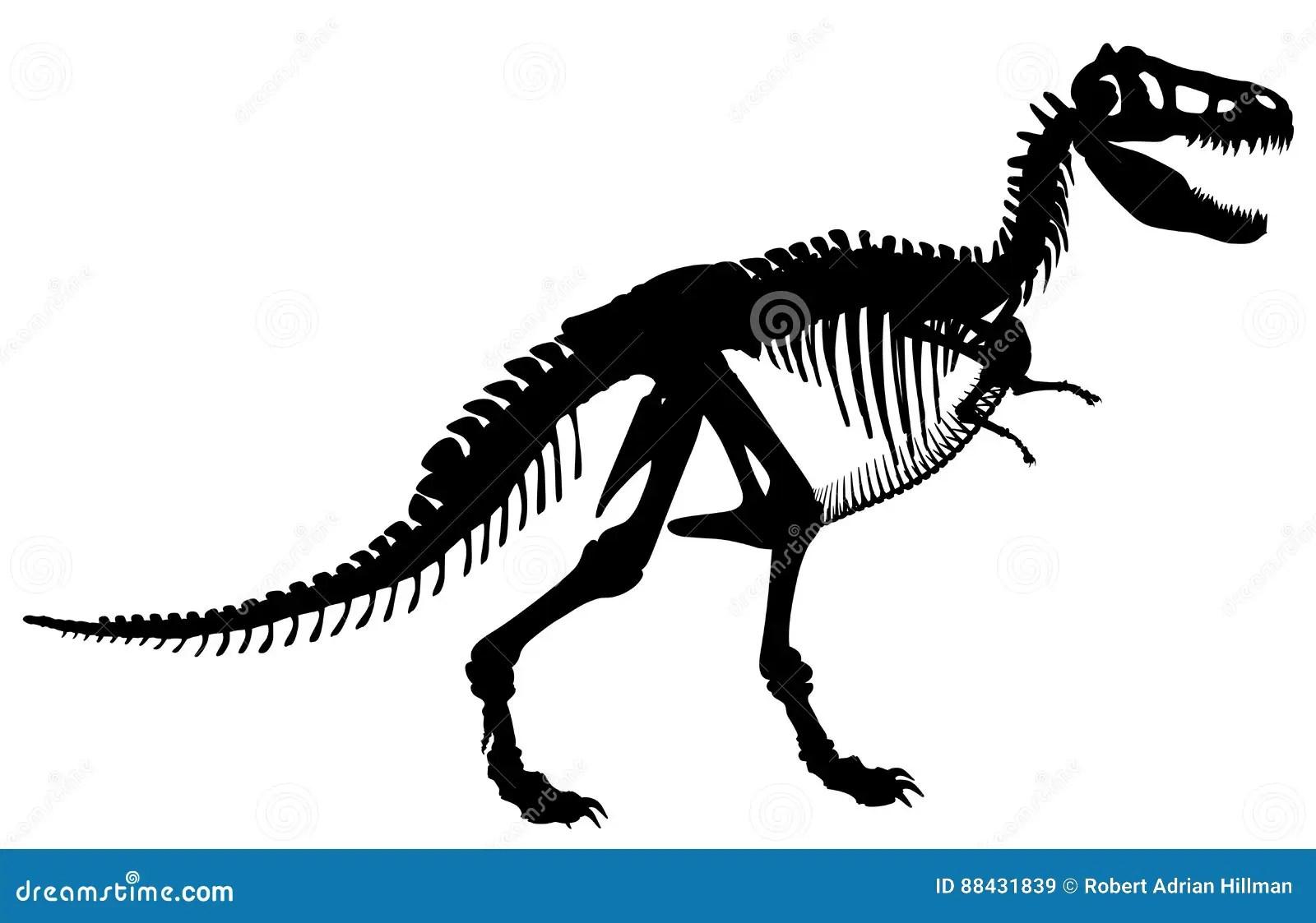 T Rex Skeleton Stock Vector Illustration Of Black