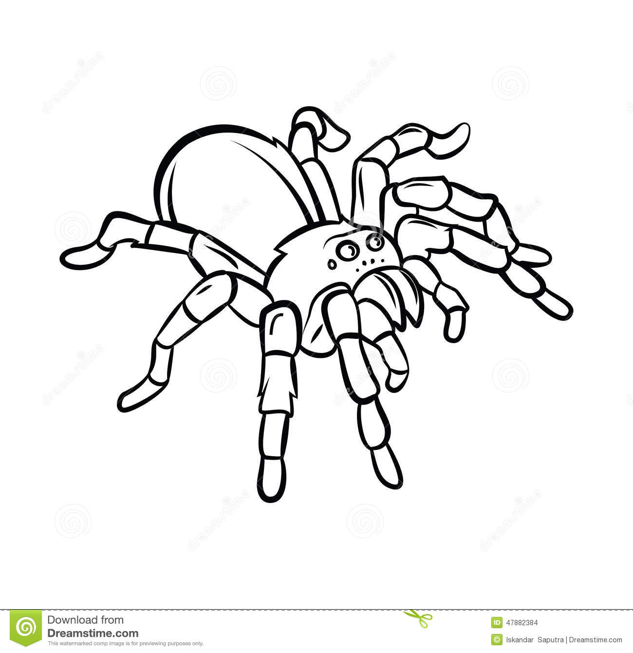 Tarantula Tattoo Stock Vector Illustration Of