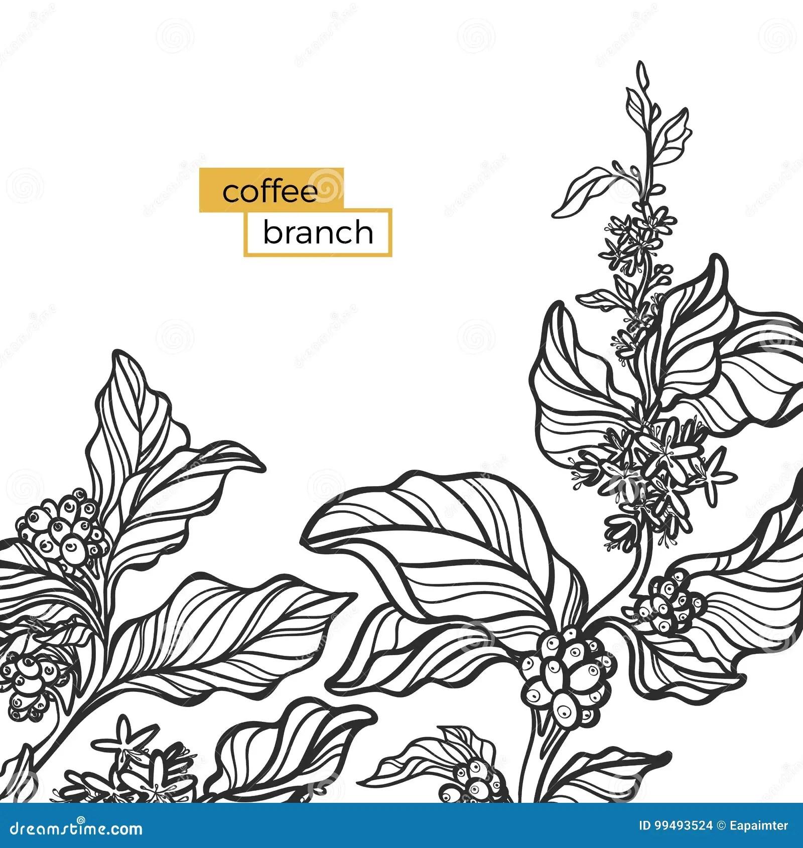 whalen cappuccino l shaped