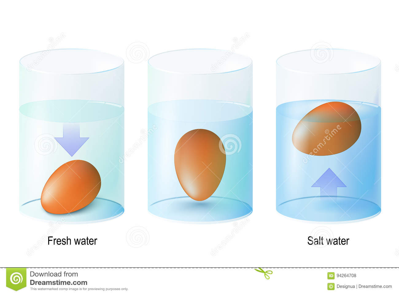 Test Egg Science Experiments And Test Eggs For Freshness