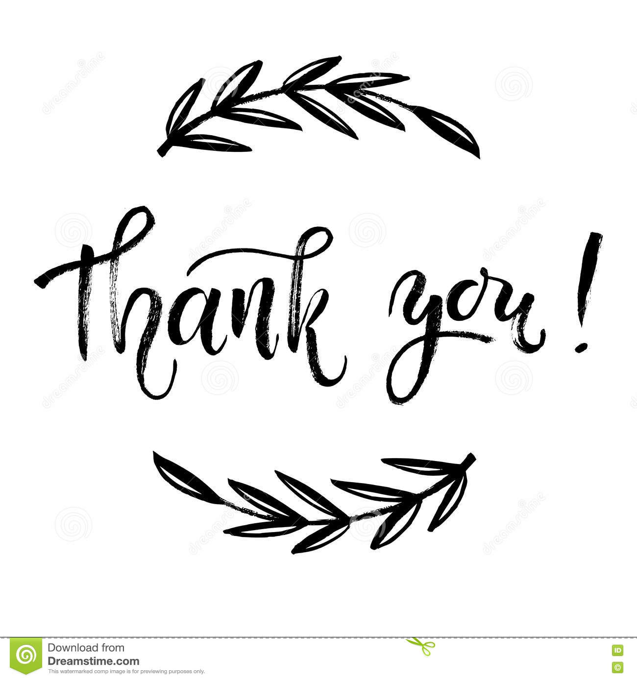 Thank You Card Vector Template Hand Lettering Brush Pen