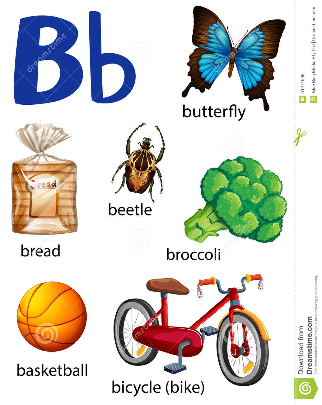 Things That Start With The Letter B Stock Vector
