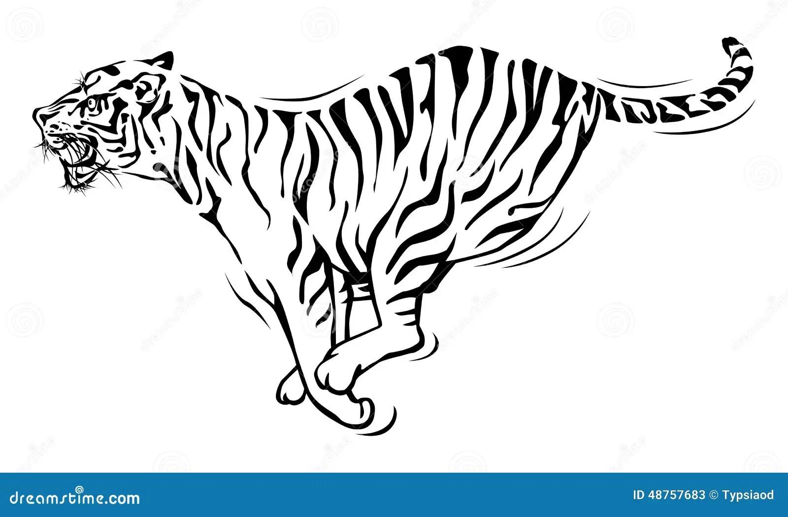 Tiger Running Stock Vector