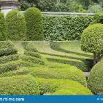 1 843 Topiary Wall Photos Free Royalty Free Stock Photos From Dreamstime