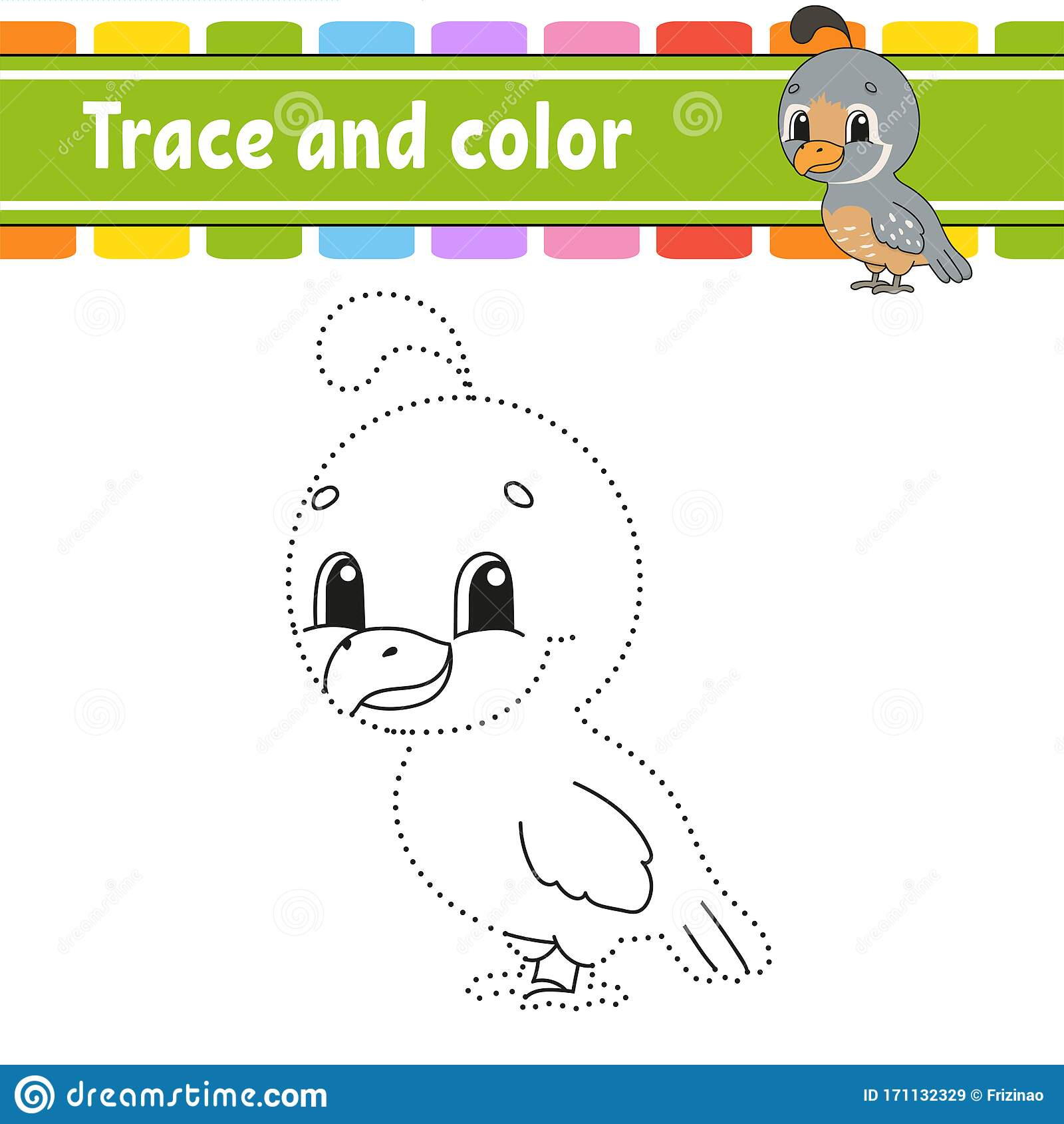 Trace And Color Quail Bird Coloring Page For Kids