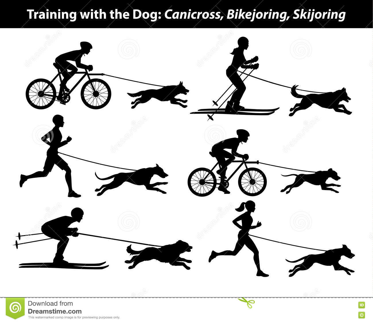 Training Exercising With Dog Canicross Bikejoring
