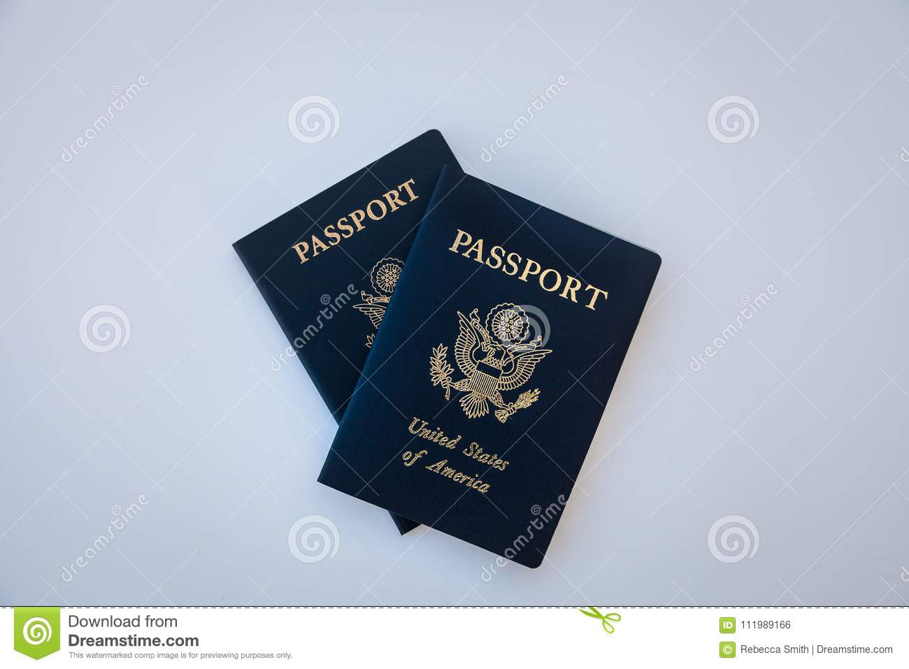 Travel Passports United States Of America Identification
