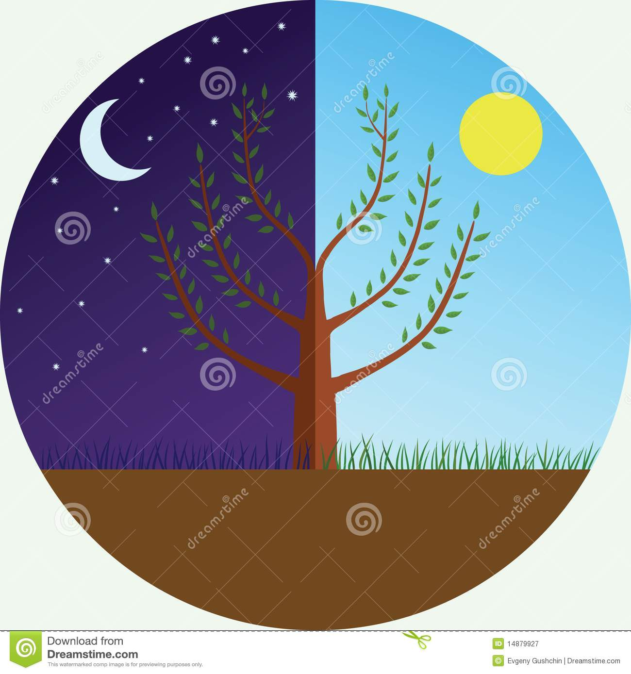Tree At Day And Night Royalty Free Stock Photography