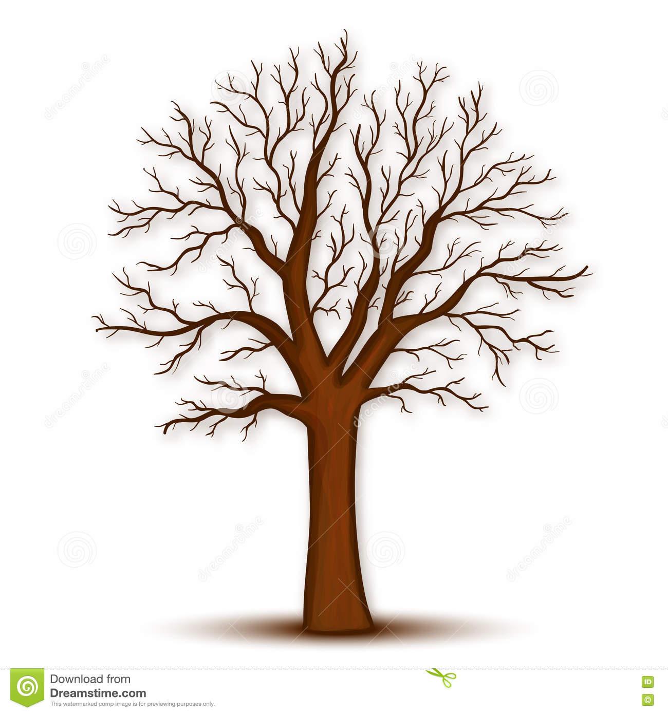 Tree Without Leaves Vector Stock Vector Illustration Of