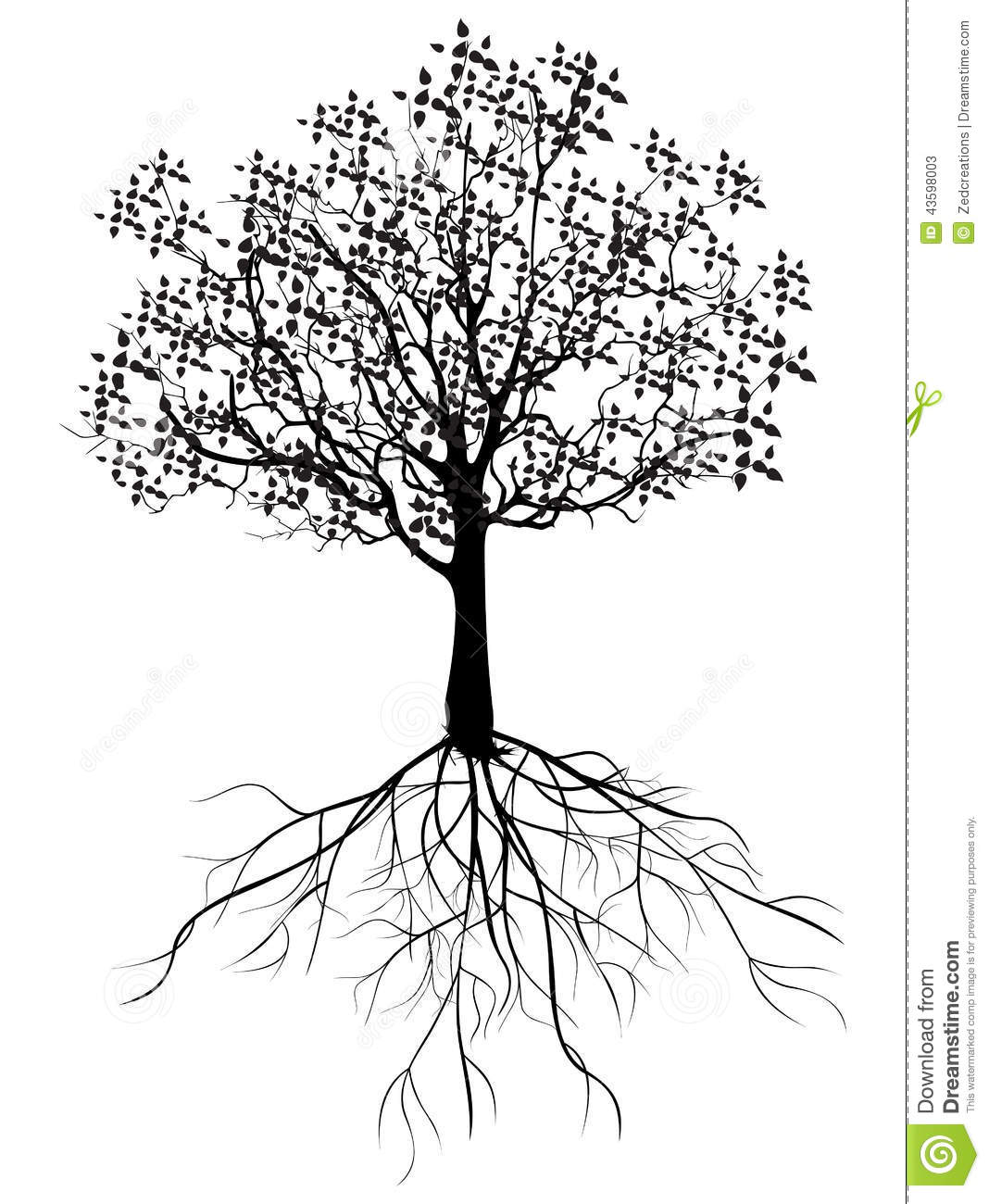 Tree With Roots Stock Illustration Image Of Forest