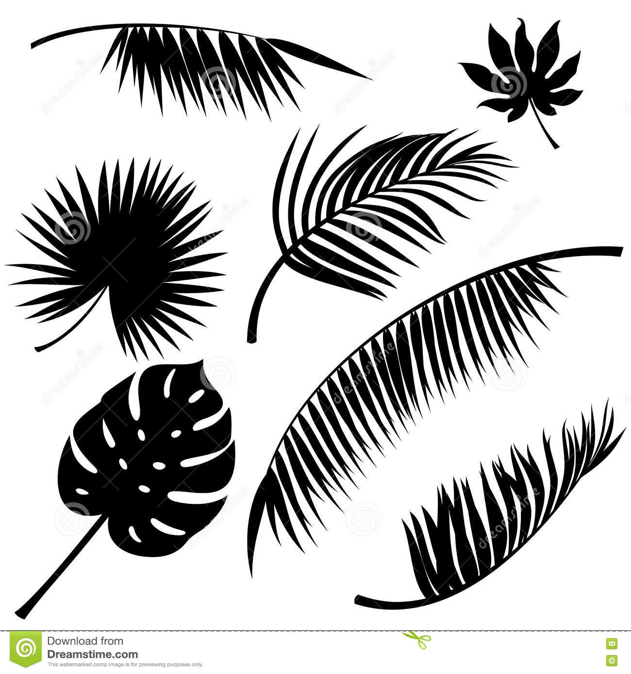 Tropical Leaves Vector Stock Vector Illustration Of