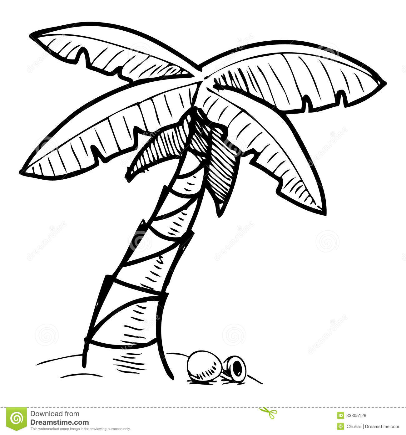 Tropical Palm Tree Sketch Illustration Royalty Free Stock
