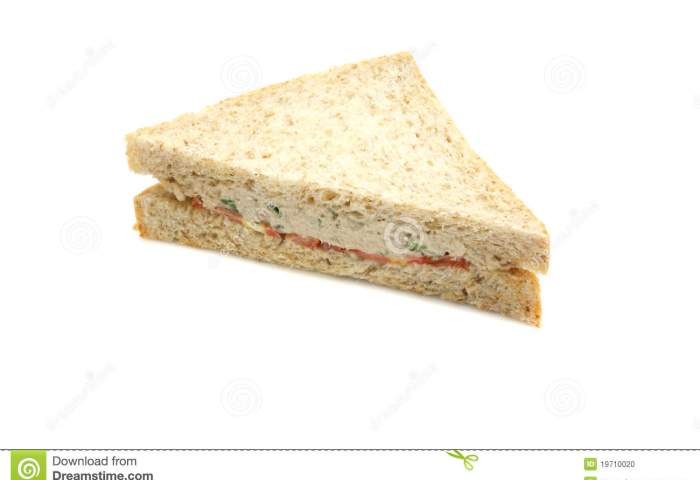Tuna Sandwich Isolated In White Background Stock Photo Image Of