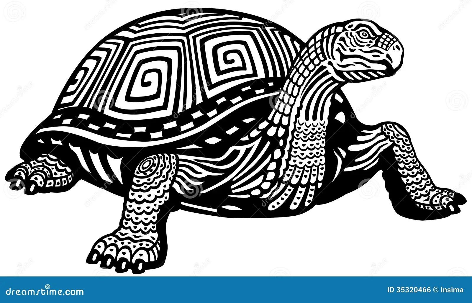 Turtle Black White Royalty Free Stock Image