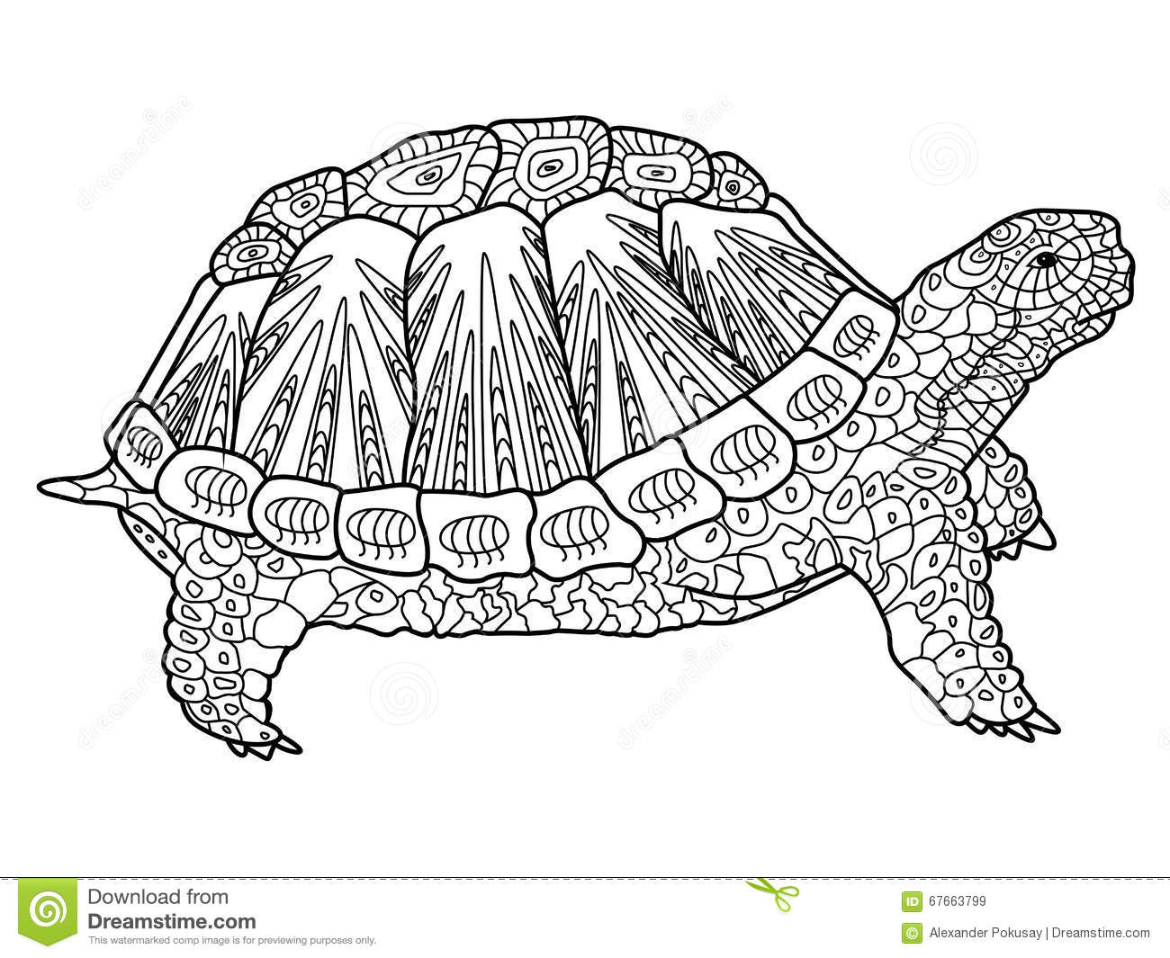 Abstract Turtle Coloring Pages For Adults Coloring Pages