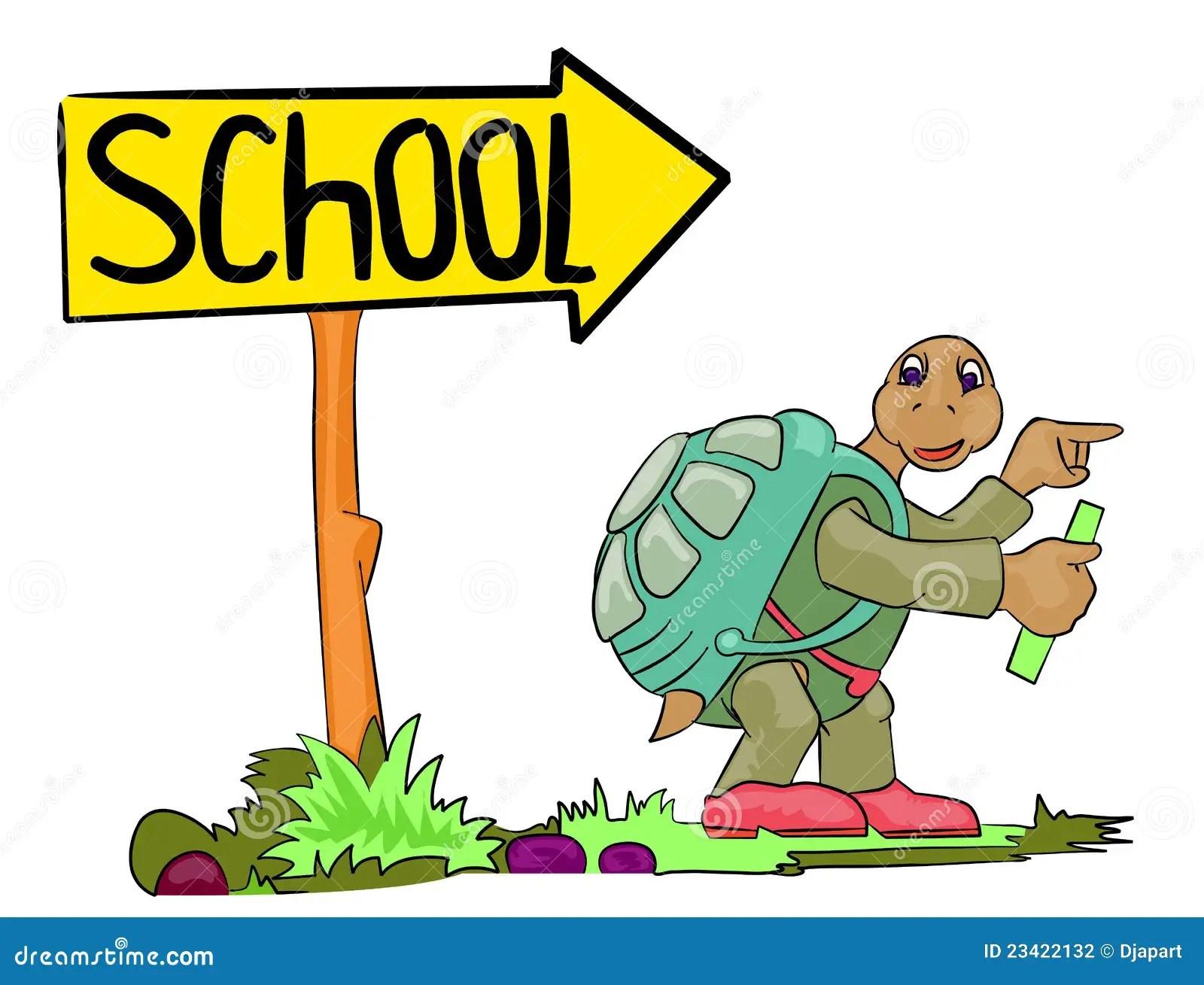 turtle go to school stock photography image 23422132