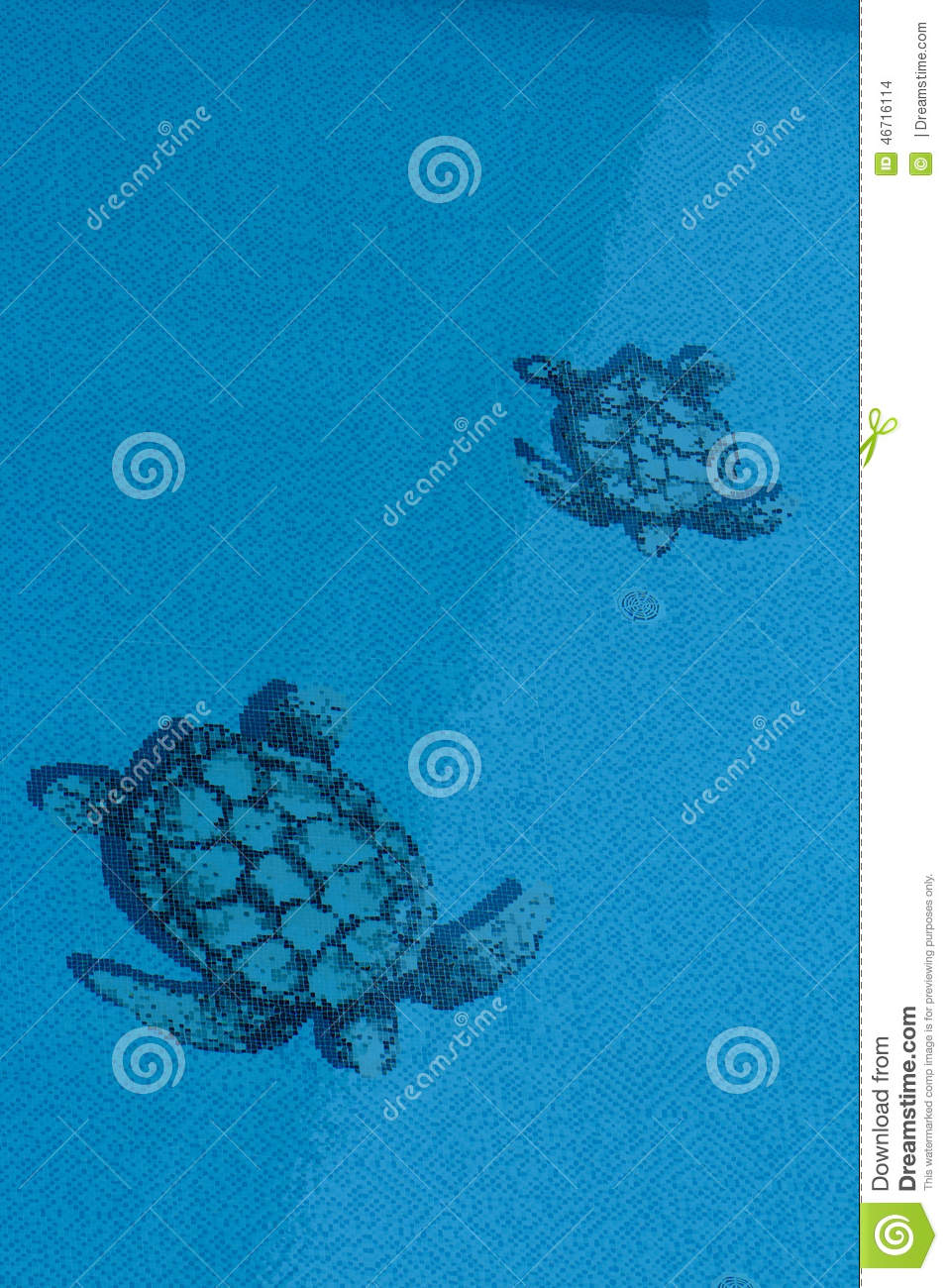 turtle texture in pool stock illustration illustration of party 46716114