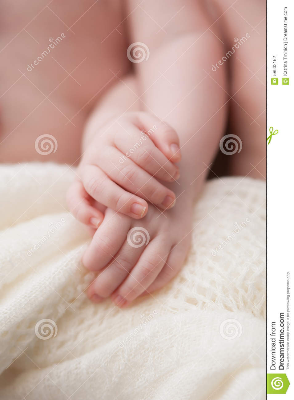 Twin Baby Girls Holding Hands Stock Photo Image Of
