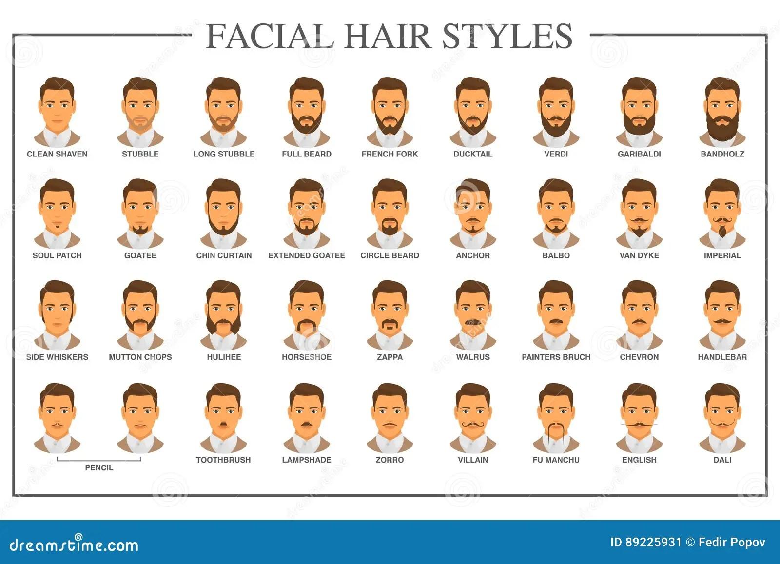 Types De Pilosite Faciale Illustration De Vecteur