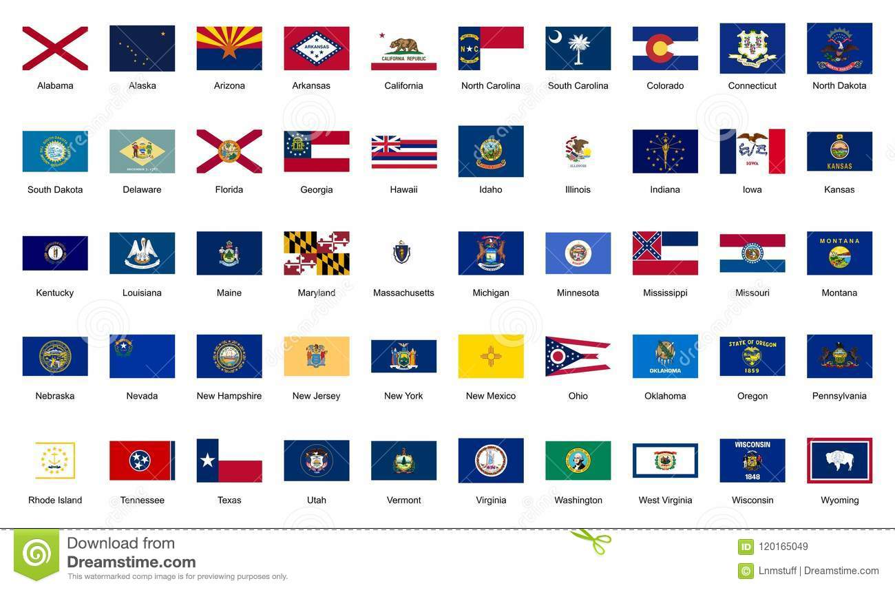 U S A 50 Federal States Official Flags Editorial Stock