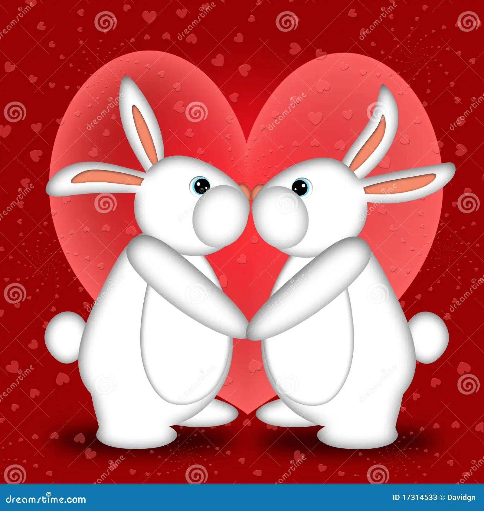 Valentines Day White Bunny Rabbits Kissing Stock Photos Image 17314533
