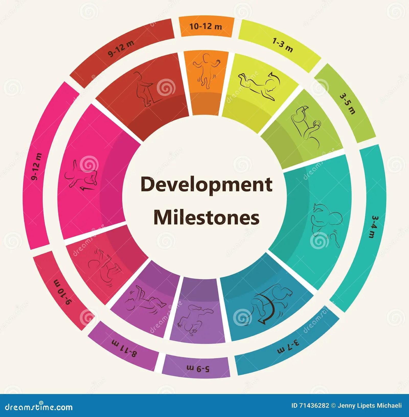 Vector Children Pyramid For Infographic Child Development