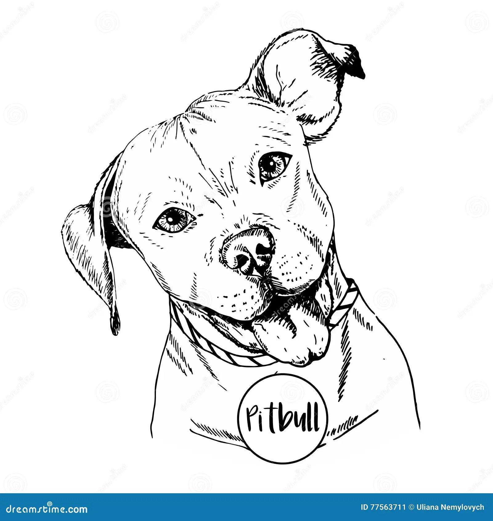 Dog Illustration Stock Illustration