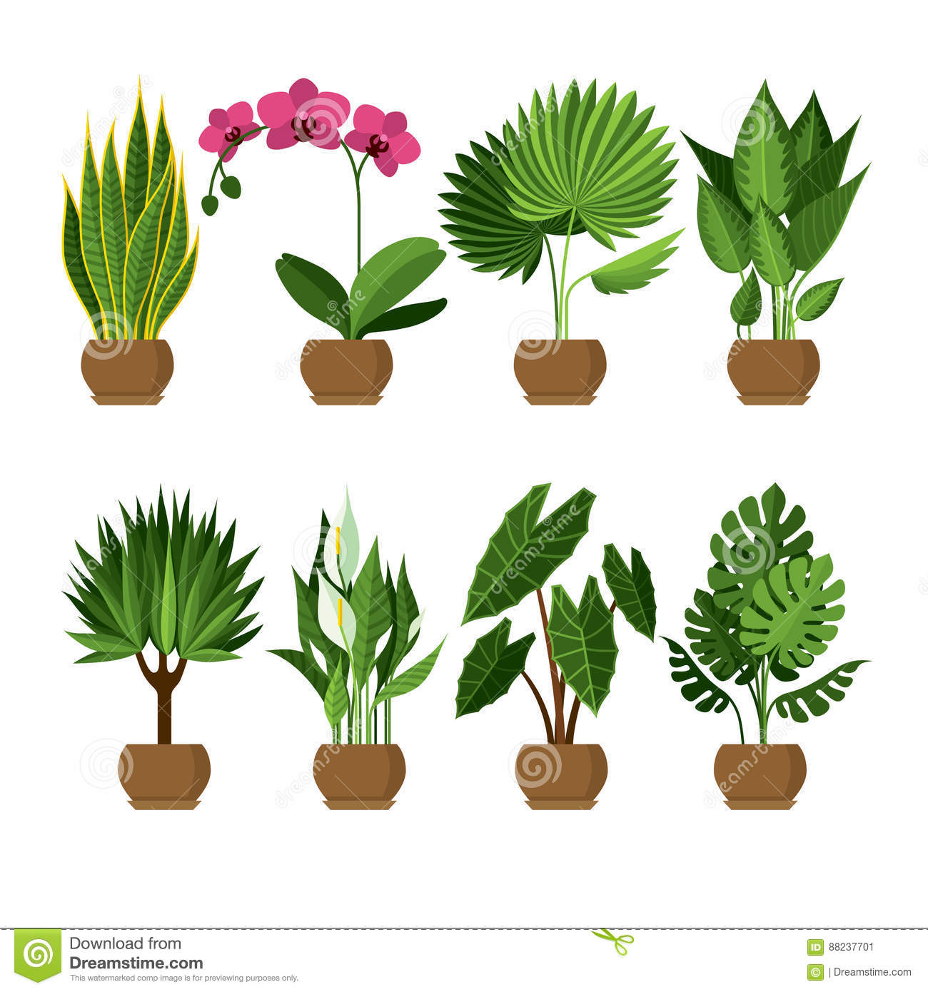Vector Collection Of Indoor House Plants In Pots Stock