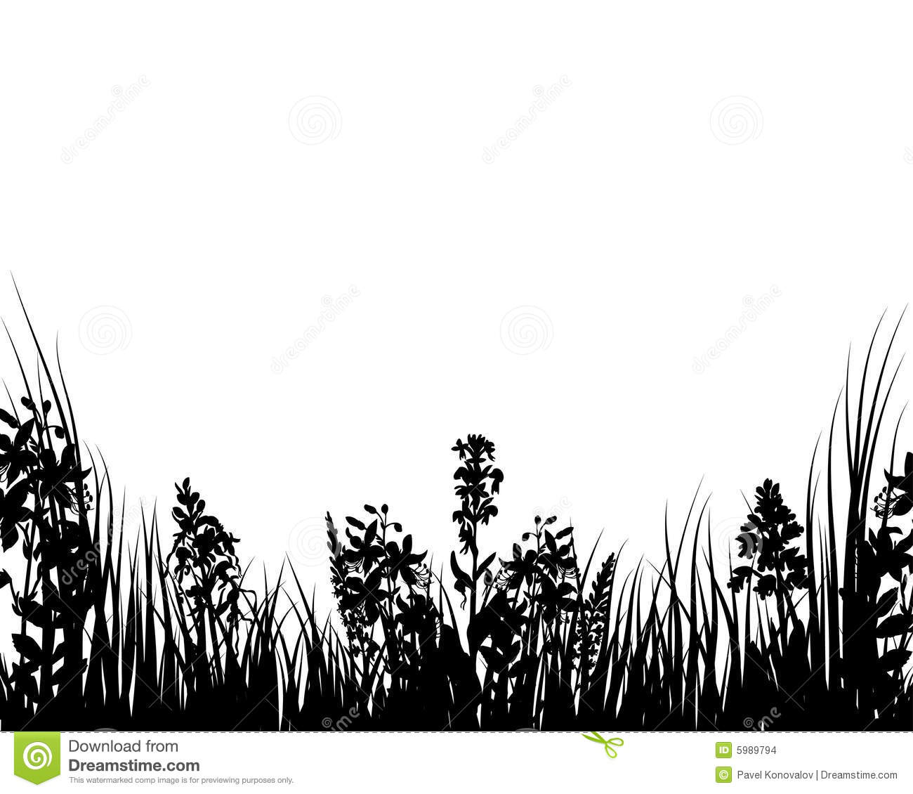 Vector Grass And Flowers Stock Images