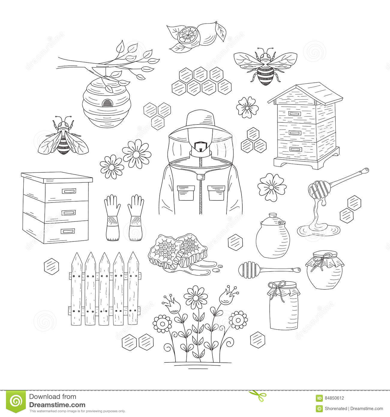Vector Honey Collection With Beekeeping Elements Stock