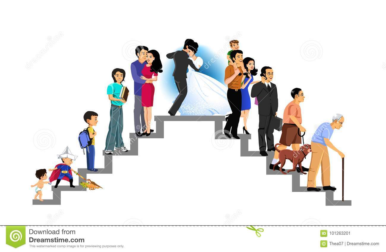 Stages Of Life And Human Development Stock Illustration