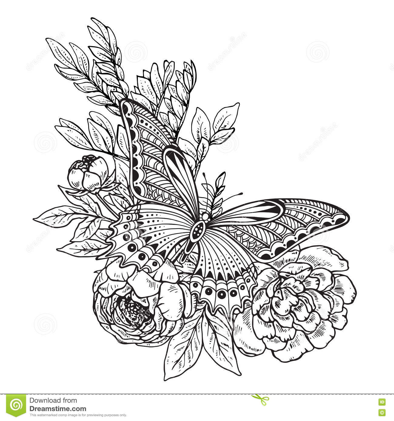 Vector Illustration Of Hand Drawn Graphic Butterfly Stock