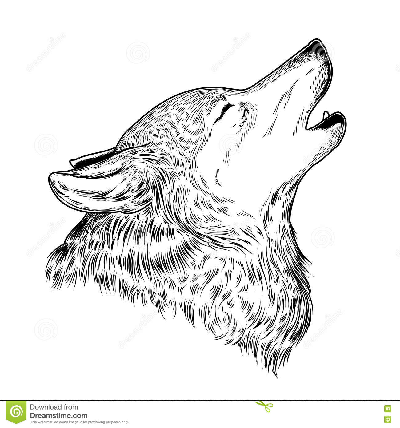 Vector Illustration Of A Howling Wolf Vector Illustration