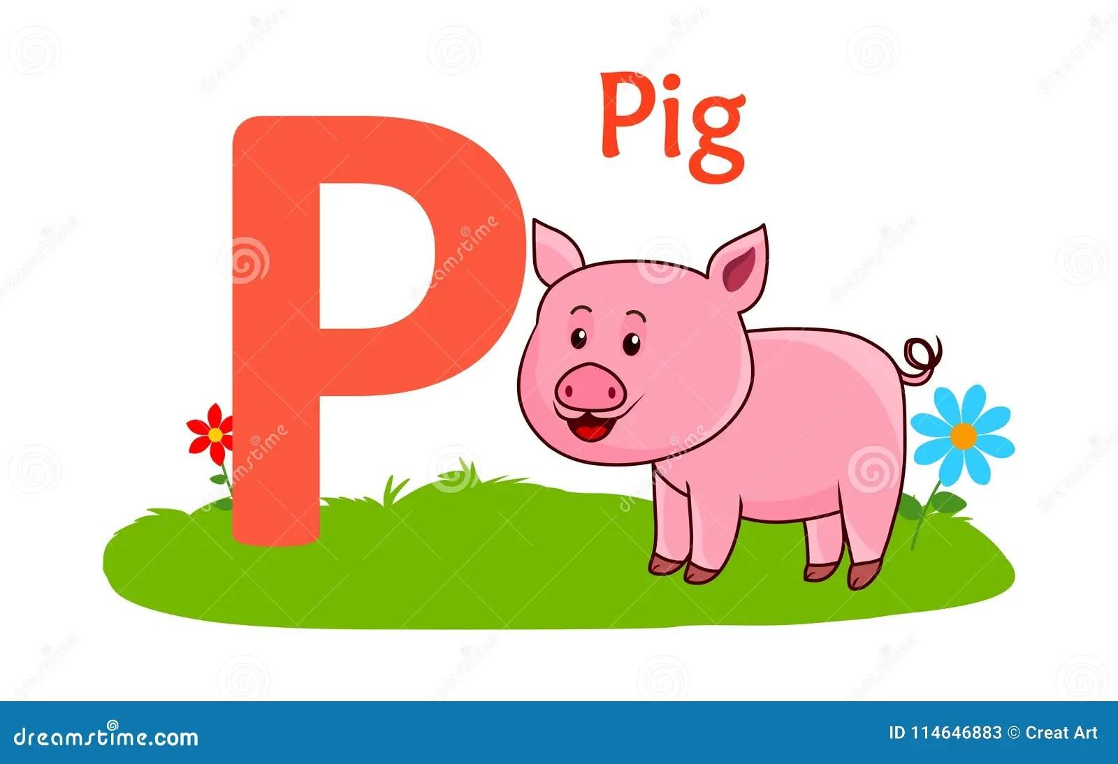 Animal Alphabet P P For Pig Stock Vector