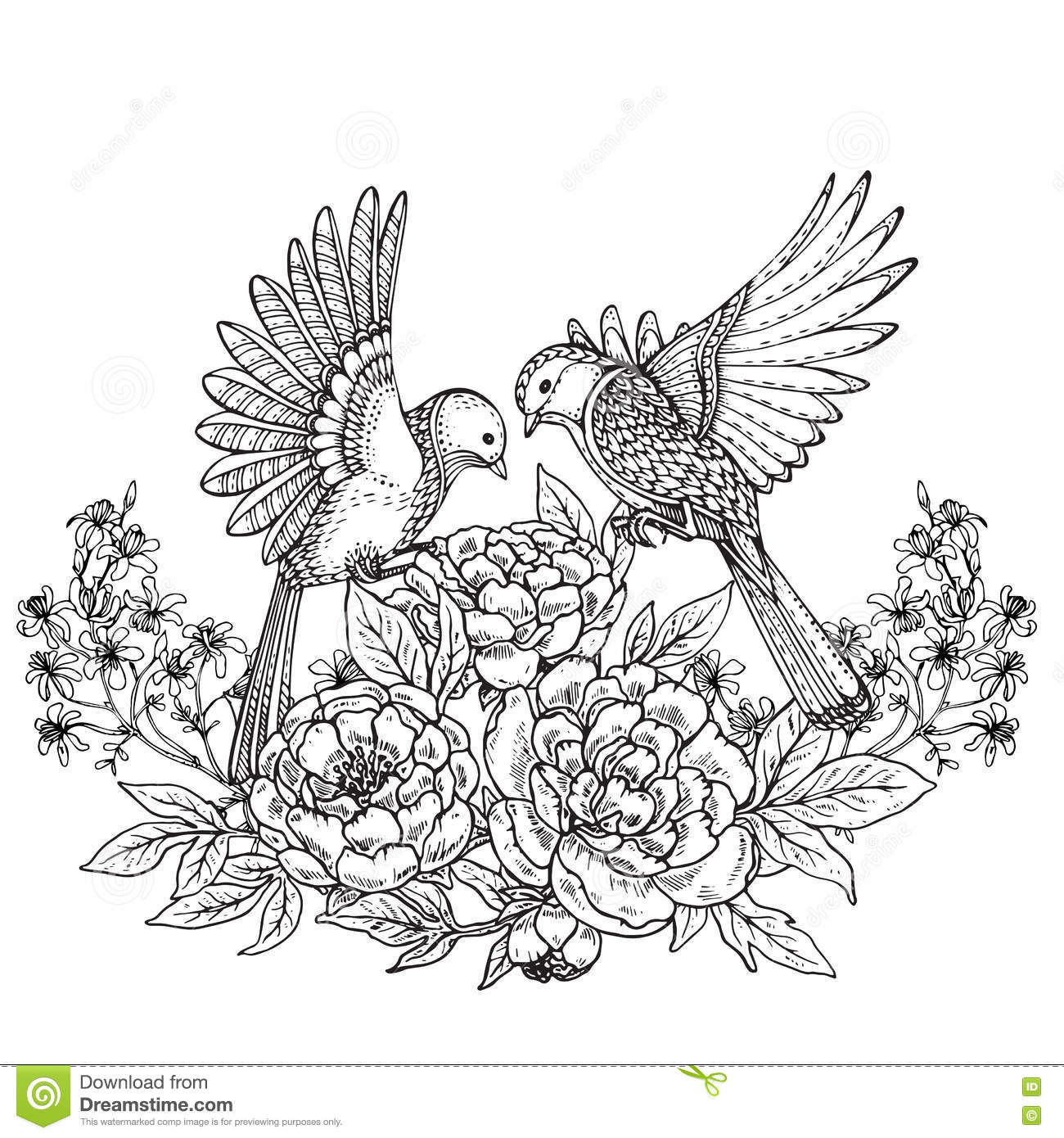 Vector Illustration Of Two Hand Drawn Graphic Birds And