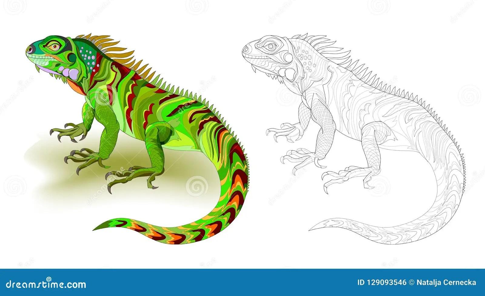 Cartoon Iguana Coloring Book Vector Illustration