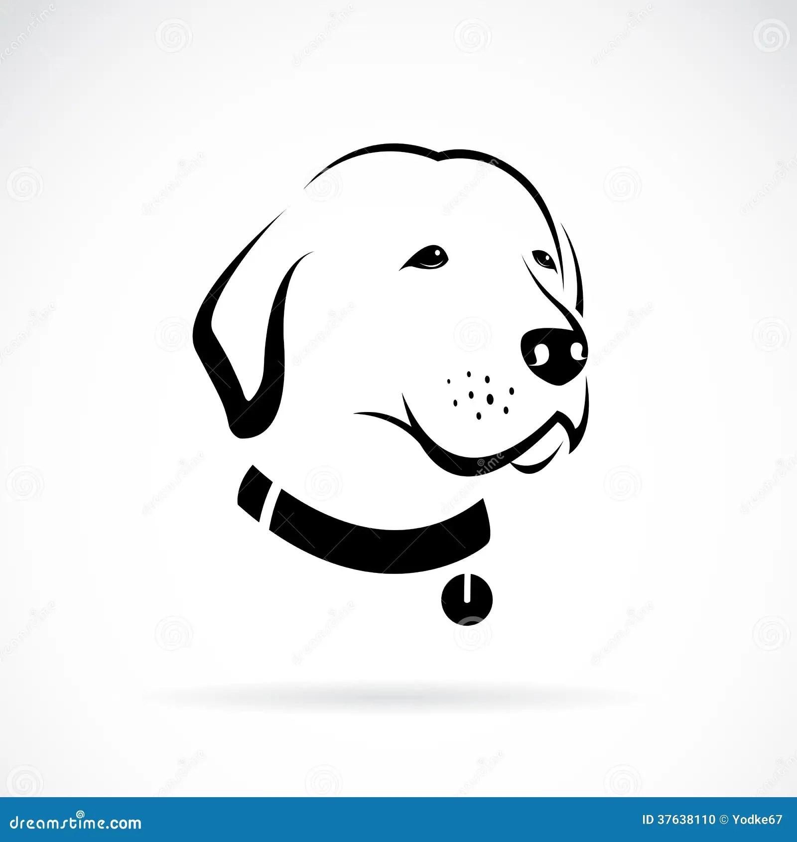 Vector Image Of An Labrador Dog S Head Stock Photo