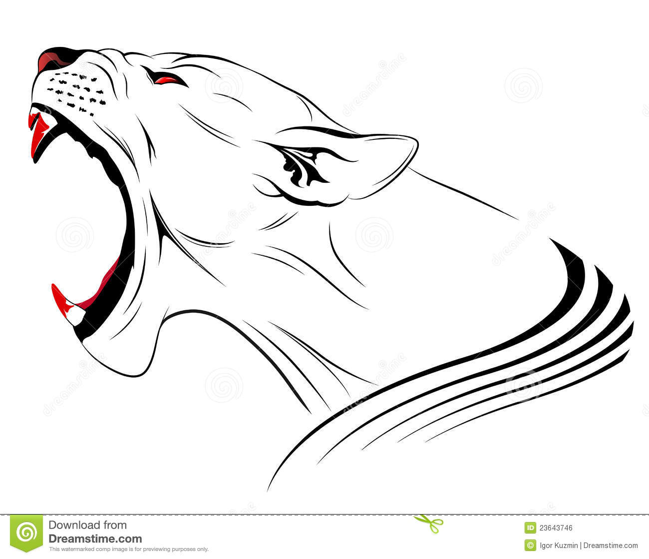 Vector Lion Stock Vector Illustration Of Lioness Angry
