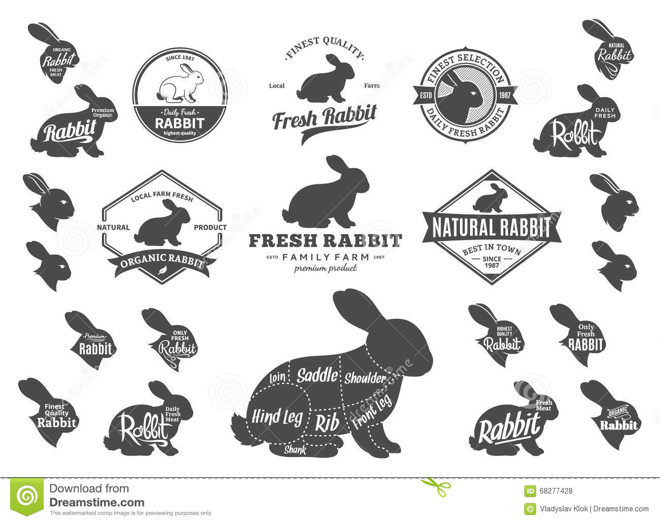 The Rabbit Diagram Cartoon Vector